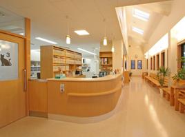とがさき動物病院photo