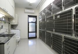 入院施設(犬舎)